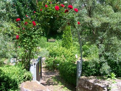Das Rosentor lädt zum Eintreten in den Möglinger Kräutergarten ein.